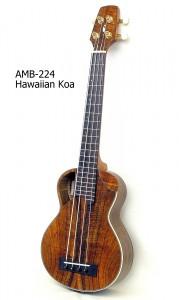 AMB-224_5