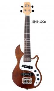 EMB-100p_2xp2